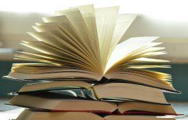 libri camilleri